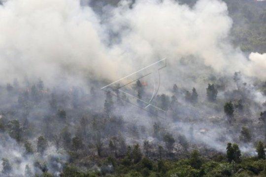 Titik panas di Sumatera Selatan tetap muncul meski sudah hujan