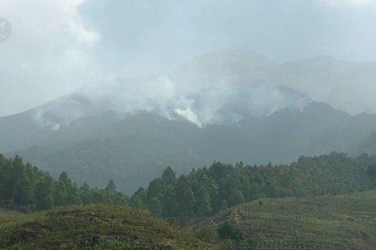 Pendakian Gunung Sumbing ditutup