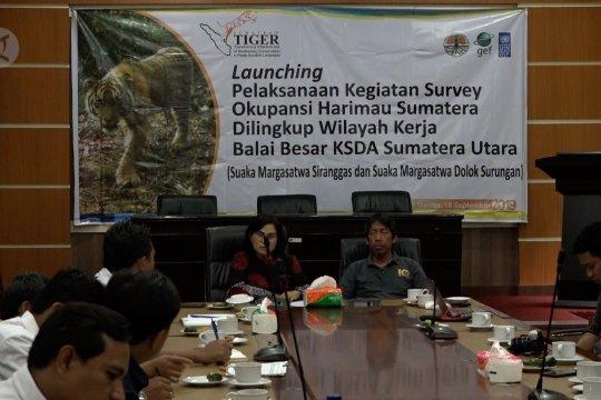 BBKSDA pelopori survei okupansi Harimau Sumatera