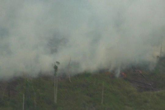 Kawasan hutan di Kalteng masih menyimpan titik api