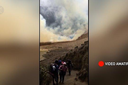 Kebakaran di Gunung Semeru meluas, akses ditutup total