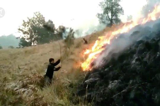 Lahan terbakar Gunung Semeru capai 30 hektar lebih