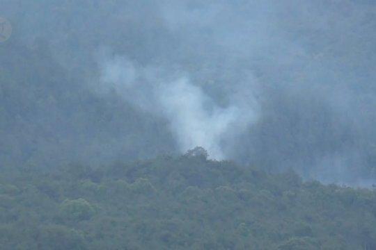 Pencari madu diduga sebabkan hutan Gunung Lawu terbakar