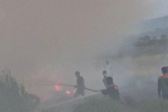 Polda Sumsel tetapkan 23 tersangka pembakar hutan & lahan
