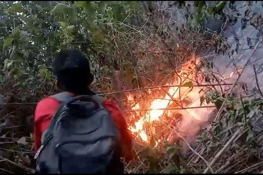 Berjibaku memadamkan kebakaran Gunung Sumbing