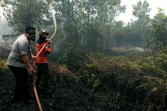 Kebakaran lahan kembali terjadi di Kotawaringin Timur