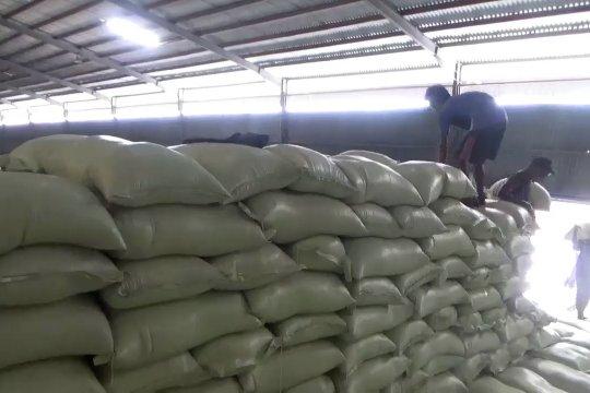 Stok beras Bulog sudah mencapai 70 persen