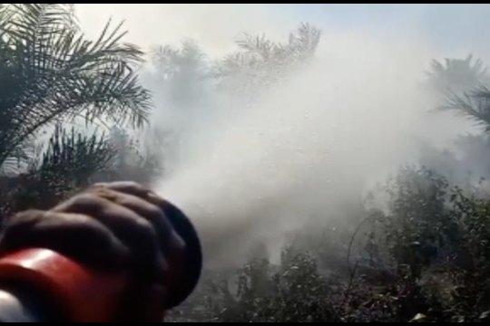 Dua pekan terbakar, kabut asap meluas ke tiga kecamatan