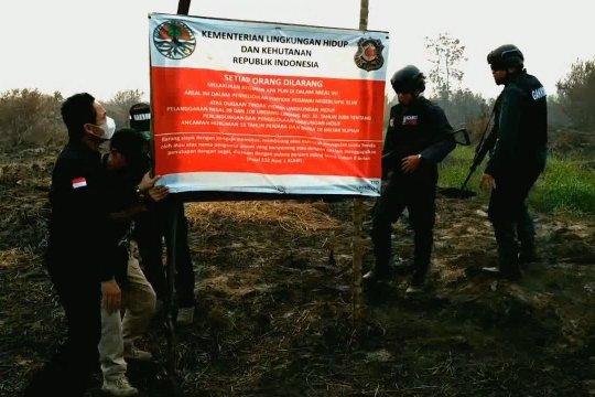 KLHK segel 2 perusahaan sawit di Kalteng