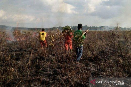 Balai TN Matalawa lakukan pendataan dampak kebakaran lahan