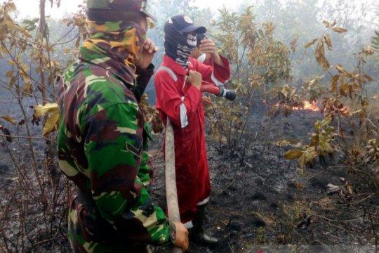Sekat api efektif cegah kebakaran hutan-lahan di OKU Timur