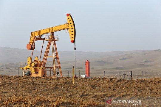 Ladang gas besar ditemukan di Tarim Xinjiang