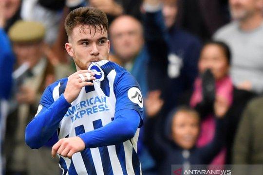 Liga Inggris: Brighton & Hove Albion bungkam Hotspur 3-0