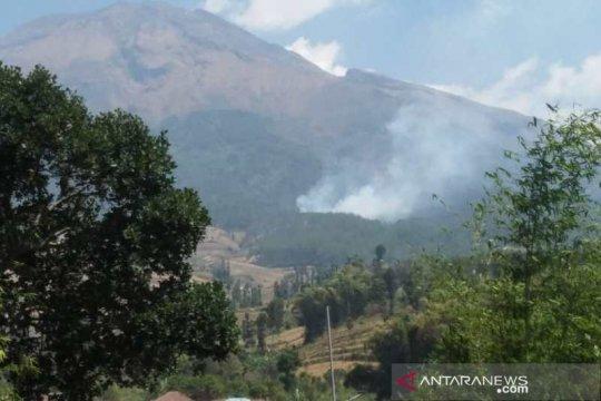 Area hutan di lereng Gunung Sumbing terbakar