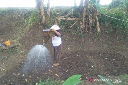 Warga kaki Gunung Gede-Pangrango kesulitan air bersih