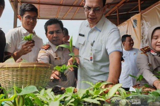 6 produk hortikultura asal Sumatera Utara sangat diminati pasar global