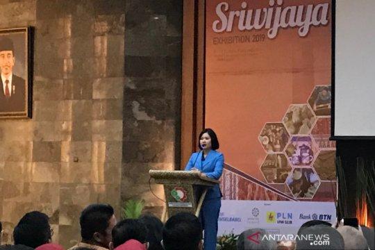 Legislator Dapil Sumsel katakan IKM potensial topang ekonomi