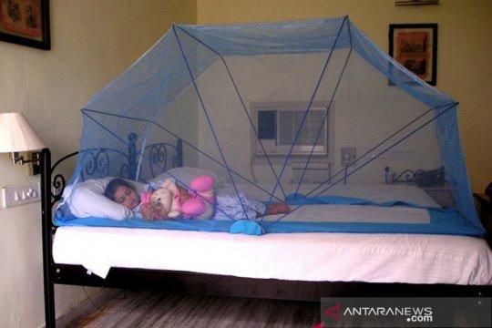 Ahli sebut kelambu kurang proteksi masyarakat dari malaria