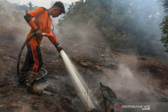 BNPB fokus cegah kebakaran lahan gambut di enam provinsi