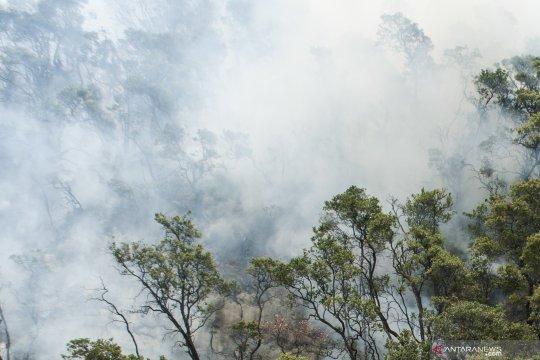 Prakiraan BPBD luas lahan terbakar Kawah Putih Ciwidey  20 hektare