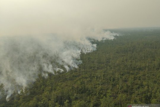 Lima pembakar lahan di Ogan Komering Ilir segera jalani sidang