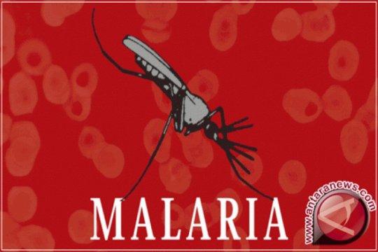 Malaria di enam kabupaten Babel berhasil dieliminasi Dinkes