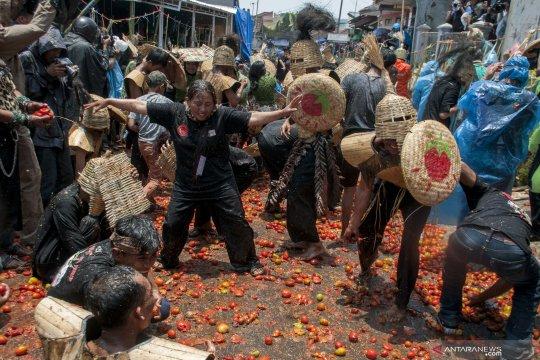 Tradisi rempug perang tomat