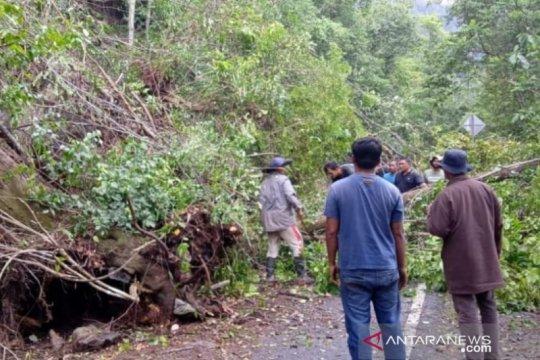 Longsor bongkahan batu gunung macetkan lintas Banda Aceh-Meulaboh