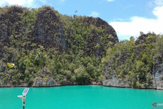 WNA hilang di hutan Raja Ampat ditemukan selamat
