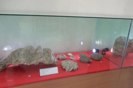 Puslit Arkenas temukan fosil kerang dan terumbu karang di Ngawi