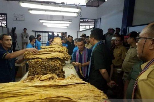 Gubernur NTB minta perusahaan tambah kuota pembelian tembakau