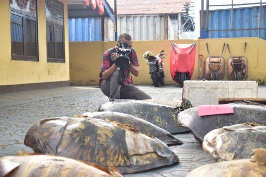 Polairud tangkap 10 nelayan pemburu penyu