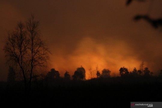 131 titik panas terdeteksi di Kalimantan Selatan
