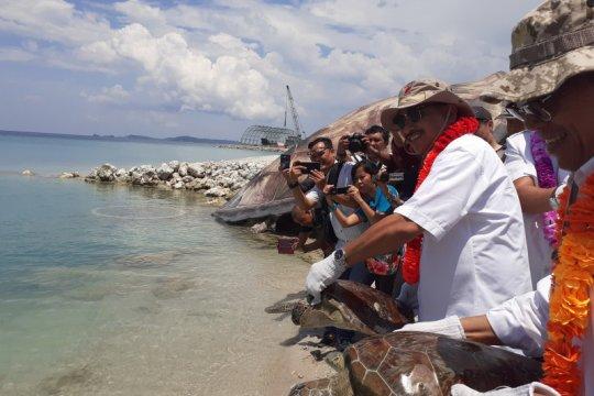 Menpar lepas penyu di Pulau Pengelap Kota Batam