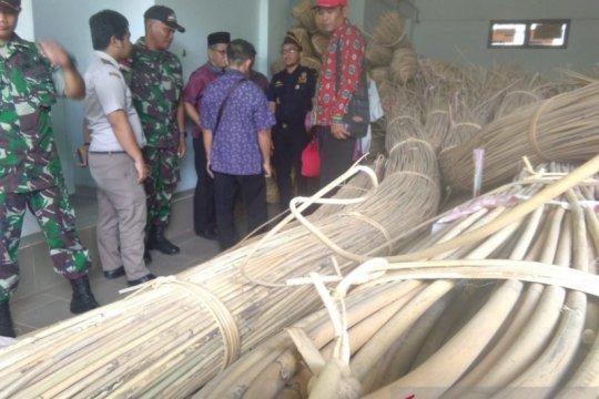 Bea Cukai hibah rotan tangkapan TNI di perbatasan Indonesia-Malaysia