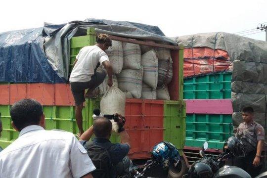 Polres Palangka Raya memusnahkan 12 ton daun Kratom