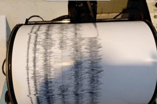BPBD: Belum ada laporan dampak gempa Jayapura magnetudo 5,8