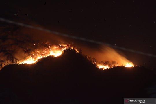 Gunung Ranti terbakar, empat pendaki terjebak di puncak