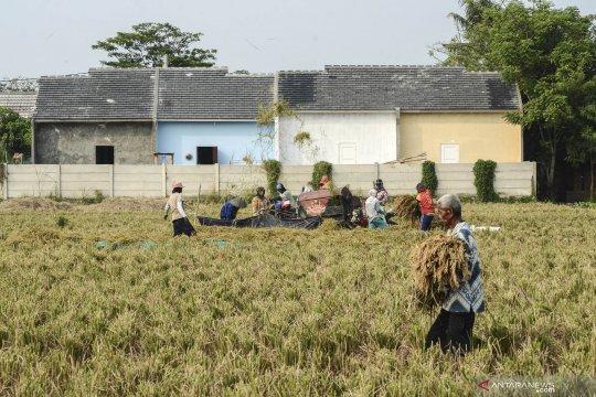 Pengendalian alih fungsi lahan sawah