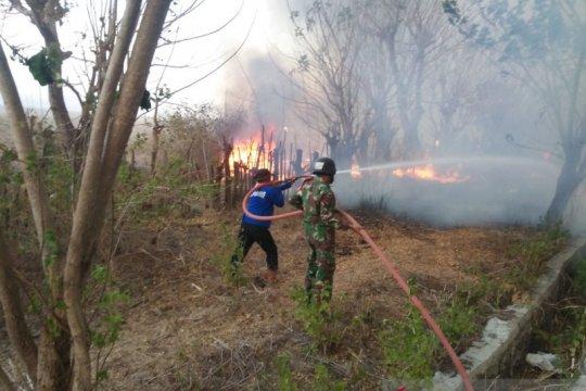 300 hektare lahan terbakar di Gunung Tambora berhasil dipadamkan