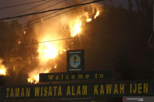 Kebakaran di gunung Widodaren Banyuwangi