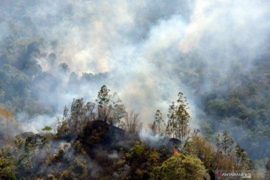 Kebakaran lahan dan hutan di Kintamani