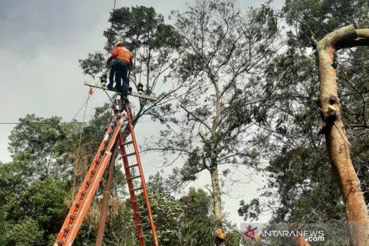 Akibat angin kencang, listrik ribuan pelanggan PLN Kota Batu padam