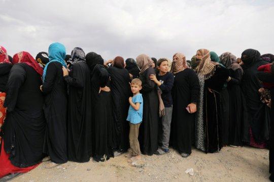 Keluarga Kurdi mengungsi ke perbatasan Suriah-Irak hindari perang