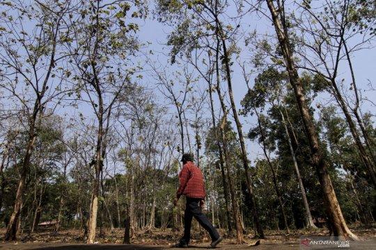 Udara Pegadungan paling tidak sehat se-Jakarta