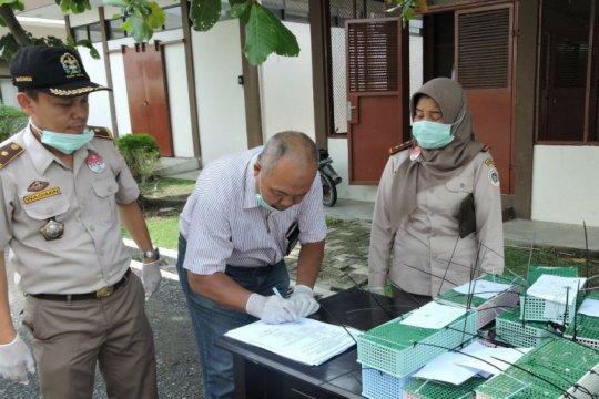 BBKSDA Sumut lepas liarkan puluhan ekor burung di Sibolangit