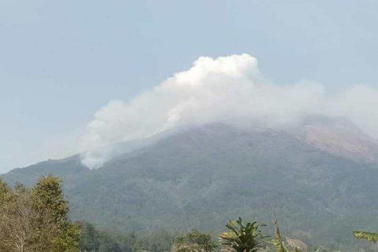 Tim gabungan berupaya padamkan kebakaran hutan Gunung Sumbing