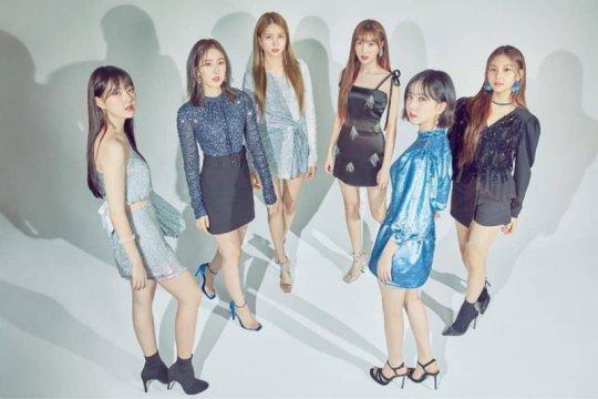 Shopee masih rahasiakan tempat konser GFRIEND di Jakarta