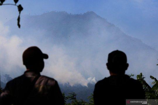 Kebakaran di Kawah Ijen dan Ranti capai 1.000-an hektare