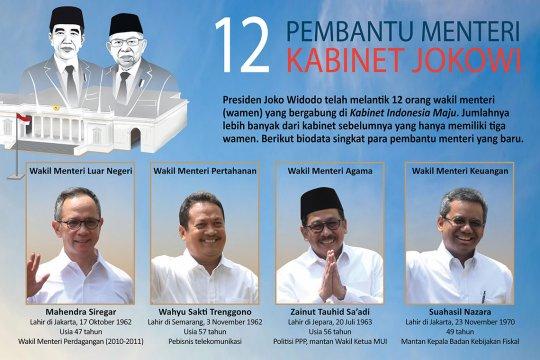 12 Wakil Menteri